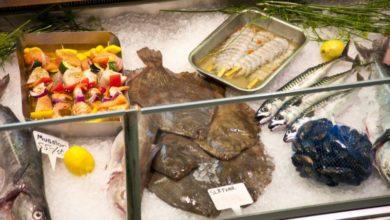 Photo of Spis godt, lækkert og sundt – måltidskasser